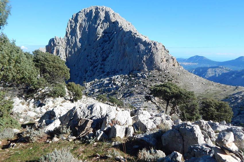escursioni-tore-solinas-supramonte-oliena-3