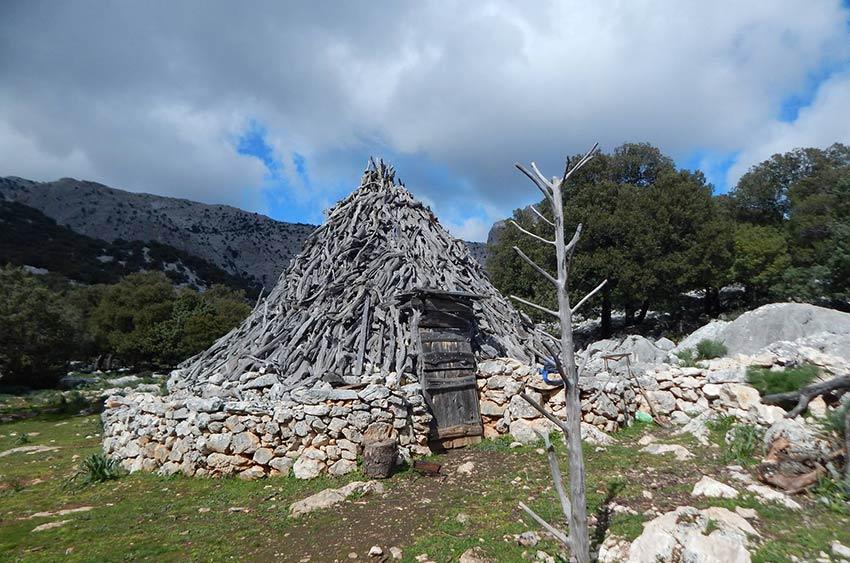 escursioni-tore-solinas-supramonte-oliena