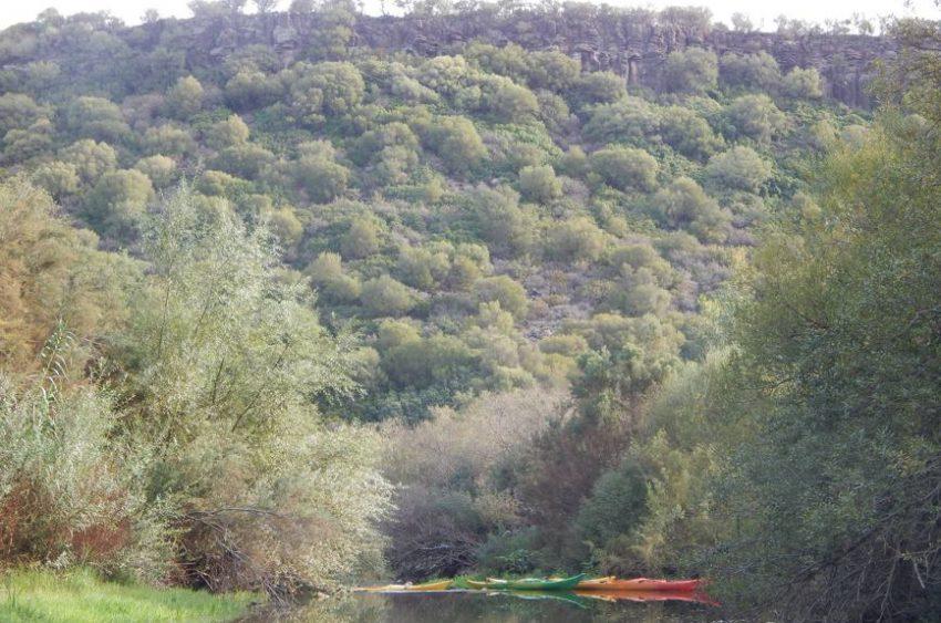 kayak-sul-cedrino (7)
